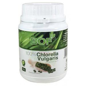 Chlorella Vulgaris 1500 szt - 300 gram